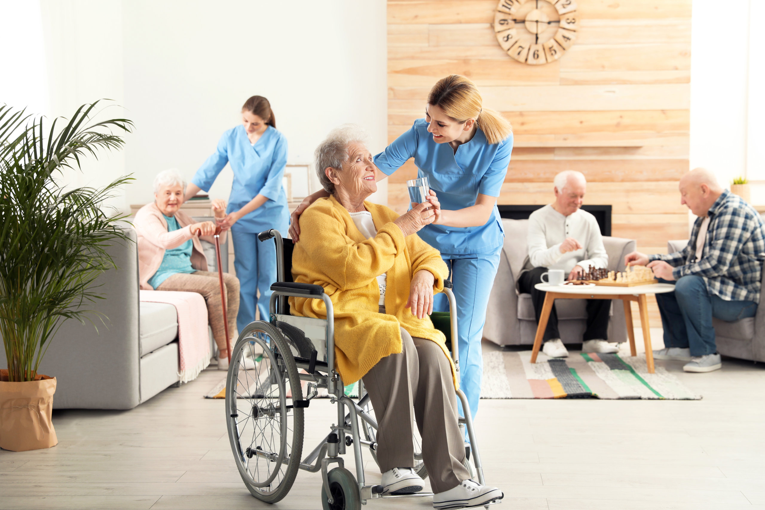 Home Care Software